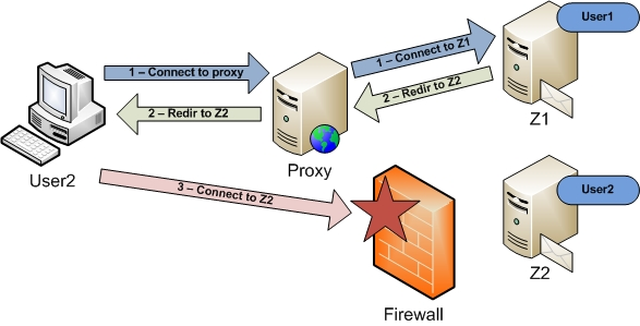 Running zcp multi server behind reverse proxy for Proxe vigila 3 manuale